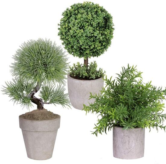 Winlyn 3 Pack Artificial Plastic Mini Plants Boxwood Topiary Trees Shrubs Fake Green Rosemary Plants